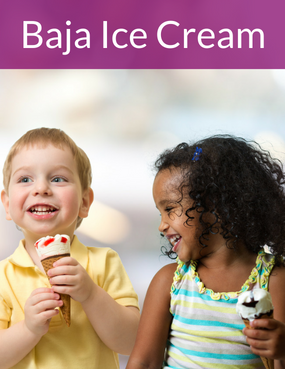 Baja Ice Cream Case Study